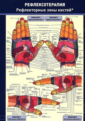 Рефлексотерапия. Рефлекторные зоны кистей