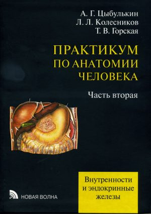 Практикум по анатомии человека. Учебное пособие в 4 томах. Том 2