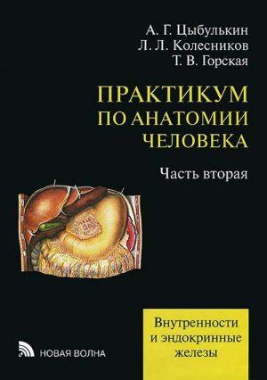 Практикум по анатомии человека. Учебное пособие в 4 томах. Том 4