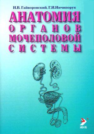 Анатомия органов мочеполовой системы. Учебное пособие