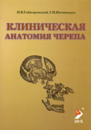 Клиническая анатомия черепа