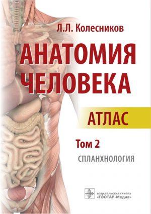Анатомия человека. Атлас в 3-х томах. Том 2. Спланхнология