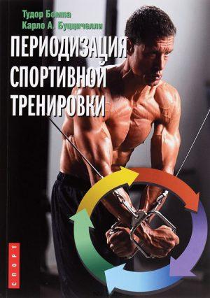 Периодизация спортивной тренировк
