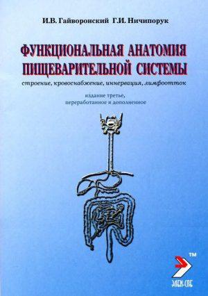 Функциональная анатомия органов пищеварительной системы (строение, кровоснабжение, иннервация, лимфоотток). Учебное пособие