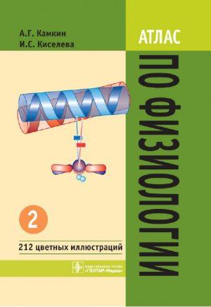Атлас по физиологии. Учебное пособие в 2 томах. Том 2