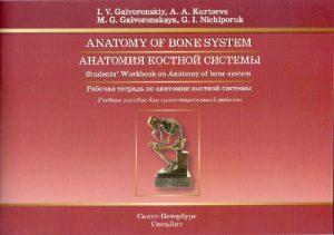 Анатомия костной системы. Рабочая тетрадь к учебному пособию на английском языке