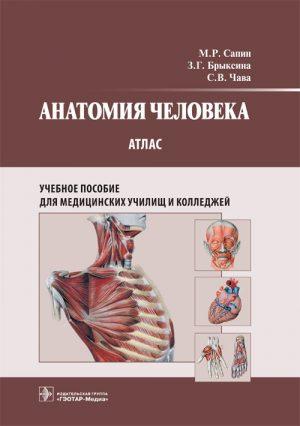 Анатомия человека. Атлас для медицинских училищ и колледжей