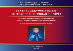 Центральная нервная системая. Рабочая тетрадь к учебному пособию на английском языке