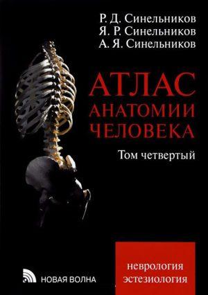 Атлас анатомии человека. В 4-х томах. Том 4. Неврология, эстезиология