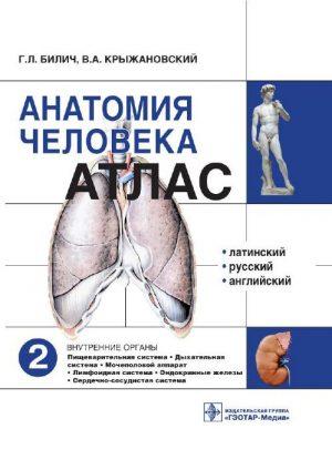 Анатомия человека. Учебное пособие в 3 томах. Том 2