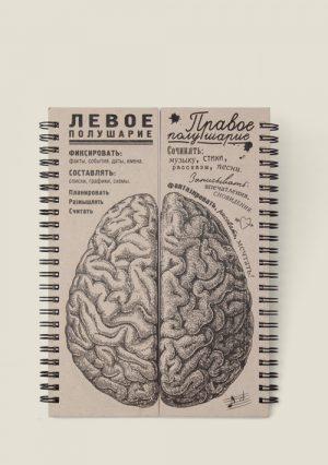 Мозги. Равные полушария. Блокнот