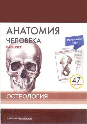 Анатомия человека. Остеология. Комплект карт