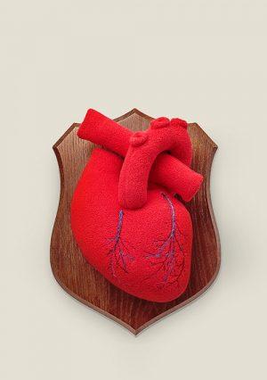 Сердце. Трофей