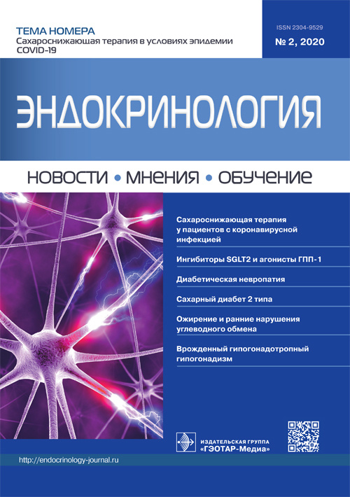 cover_endo_2_2020.indd