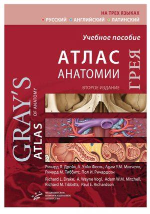 Атлас анатомии Грея. Учебное пособие