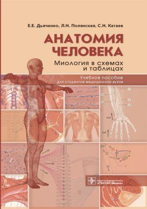 Анатомия человека: миология в схемах и таблицах
