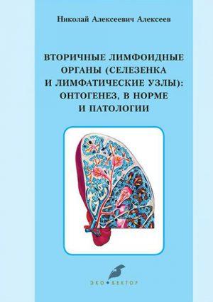 Вторичные лимфоидные органы (селезенка и лимфатические узлы). Онтогенез, в норме и патологии