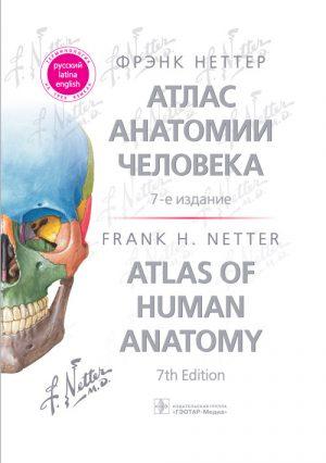 Атлас анатомии человека Неттера. Терминология на русском, латинском и английском языках