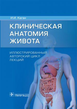 Клиническая анатомия живота. Иллюстрированный авторский цикл лекций