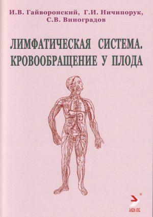 Лимфатическая сиcтема. Кровообращение у плода